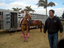 lucas juanita and gallareta pink wraps 1 16 2012